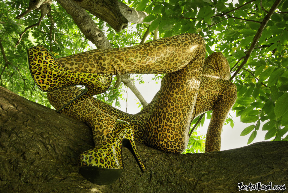 Girl clothed like leopard  | leopard clotjing, high-heeled shoes, tree, wild