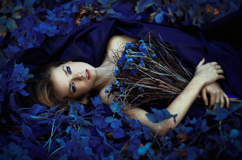 Girl in blue | blue, flowers, field, blue eyes