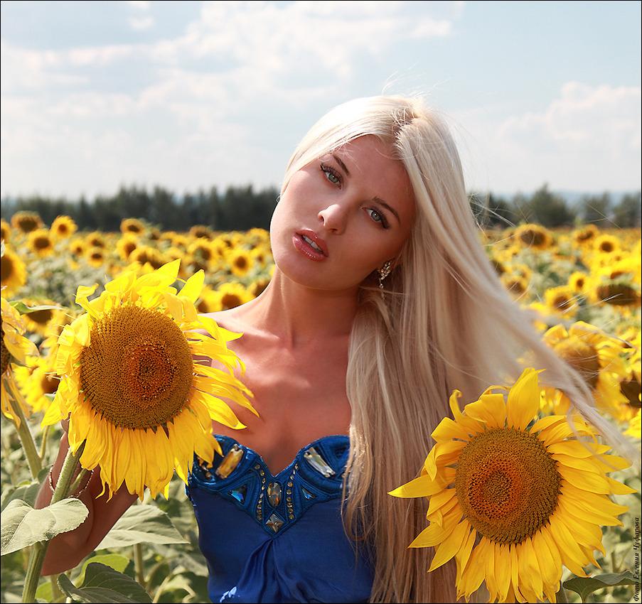 Girl in the sunflower field | sunflower, girl, summer, blond